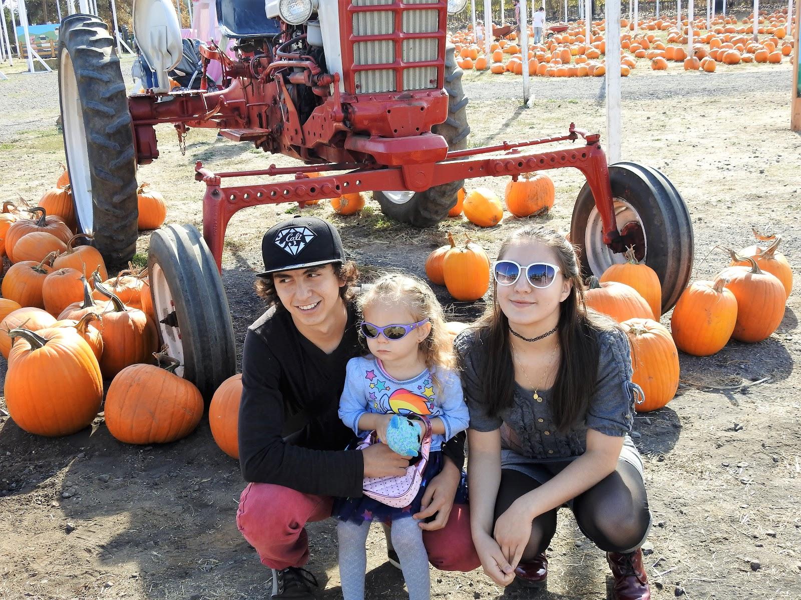 happy pumpkings