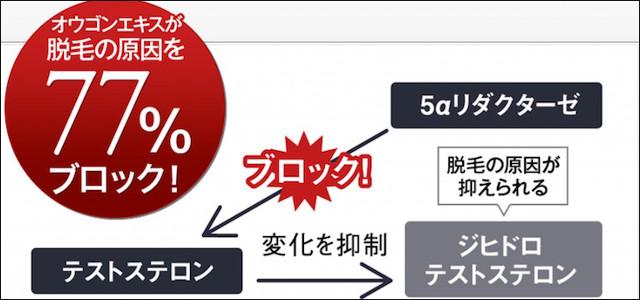 M字ハゲにおすすめの育毛剤!価格&成分で比較-15