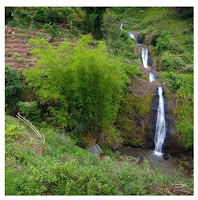 Air Terjun Kali Anjlok Ngetos Nganjuk