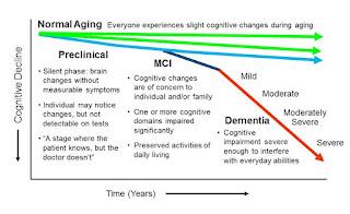 Cognitive impairment scale