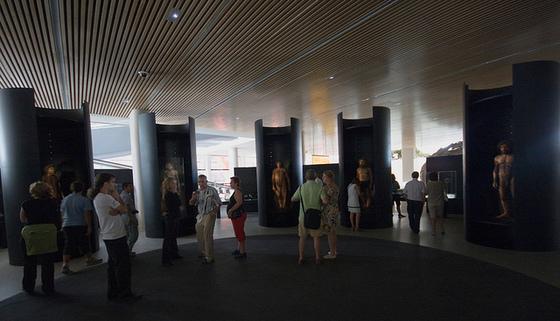 imagen_museo_burgos_evolucion_humana_hominidos
