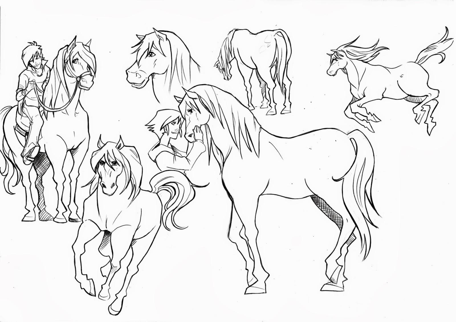 disegni da colorare cavalli
