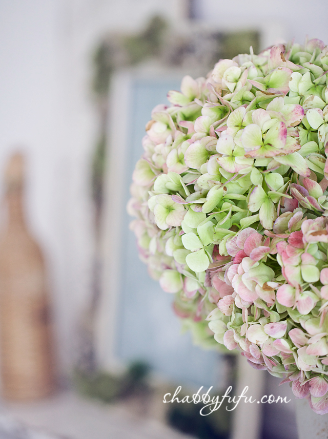These hydrangeas are perfect for any fall vignettes - they're fresh with soft pink and green colors to even out the crisp fall tones of brown, gold, and orange.
