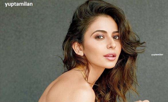 Rakul Preet Singh Photos and Pictures-Hot Images