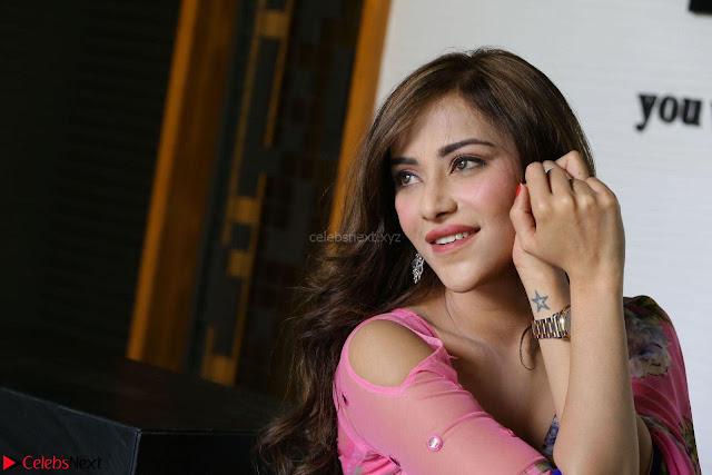 Angela Krislinzki Rogue Movie Fame Telugu Actress in Saree Backless Choli 004.JPG