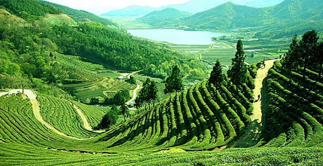 Sylhet - attractive natural tourist place in Bangladesh