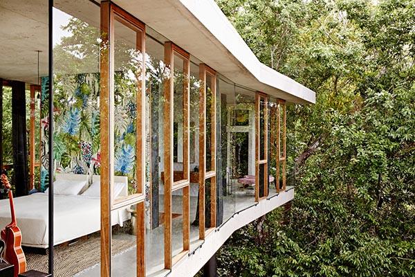 façade de maison en verre qui donne sur le nature