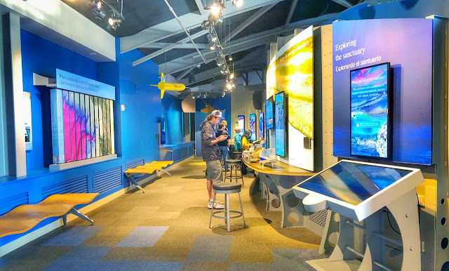 Sanctuary Exploration Center is located just steps away from the ocean and Santa Cruz Wharf. Monterey Bay National Marine Sanctuary Exploration Centre features state-of-the art exhibits and interactive displays highlighting the sanctuary and its incredible underwater environment.