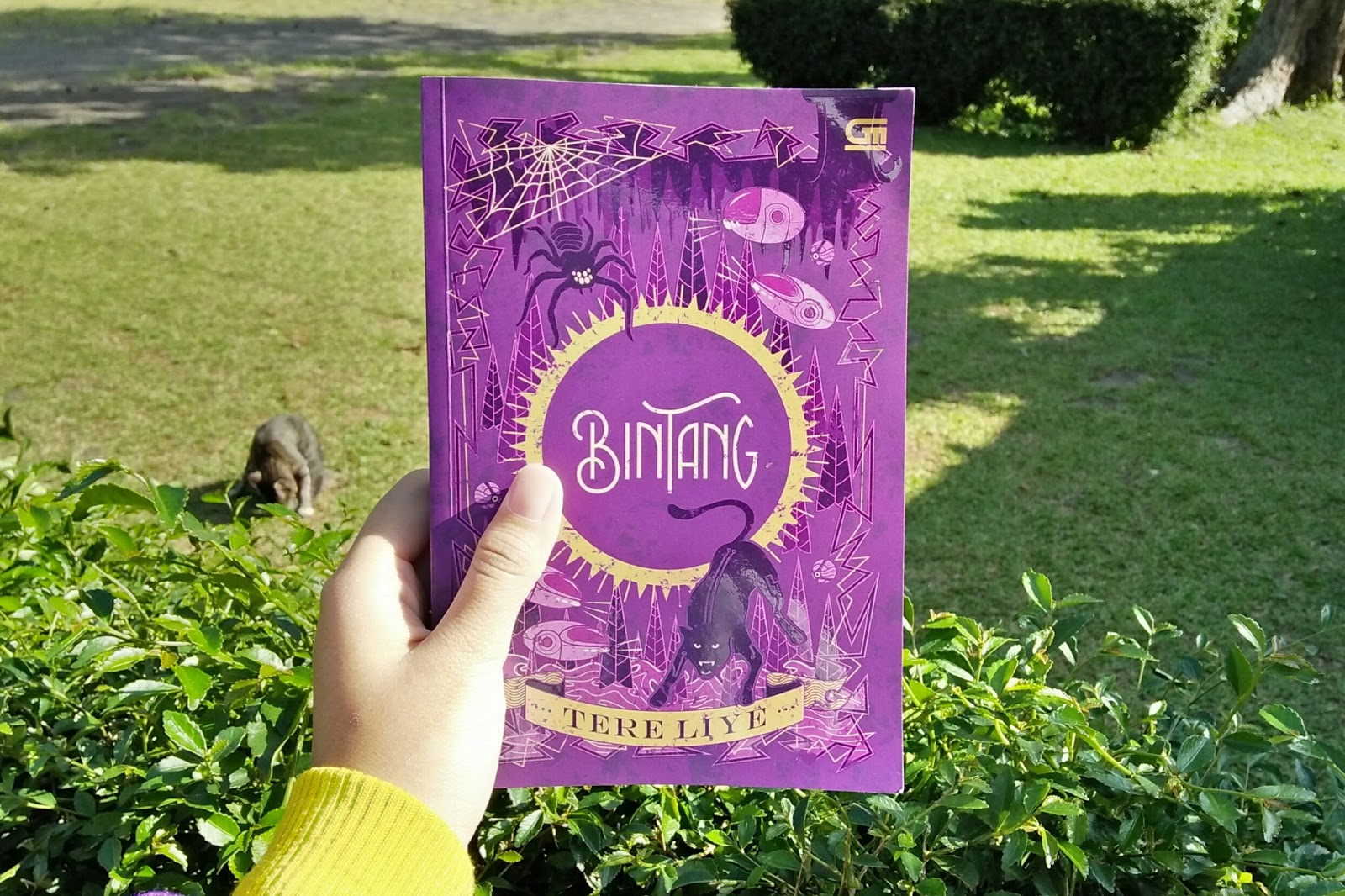Novel Tere Liye Bintang Pdf