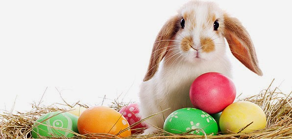 Funny Easter bunny with Easter eggs wallpapers 2021