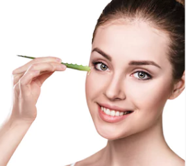 Aloe Vera Benefits For Hair and Skin, Aloe Vera uses
