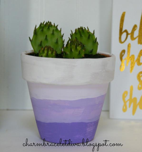 Prickly pear cactus in a DIY Succulent Ombre Clay Pot