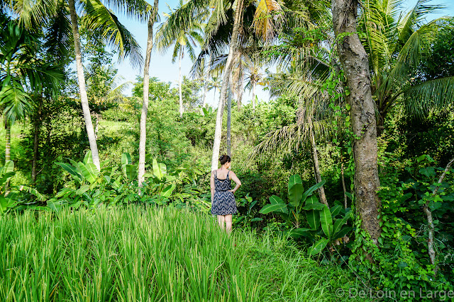 Yeh Pulu - Ubud - Bali