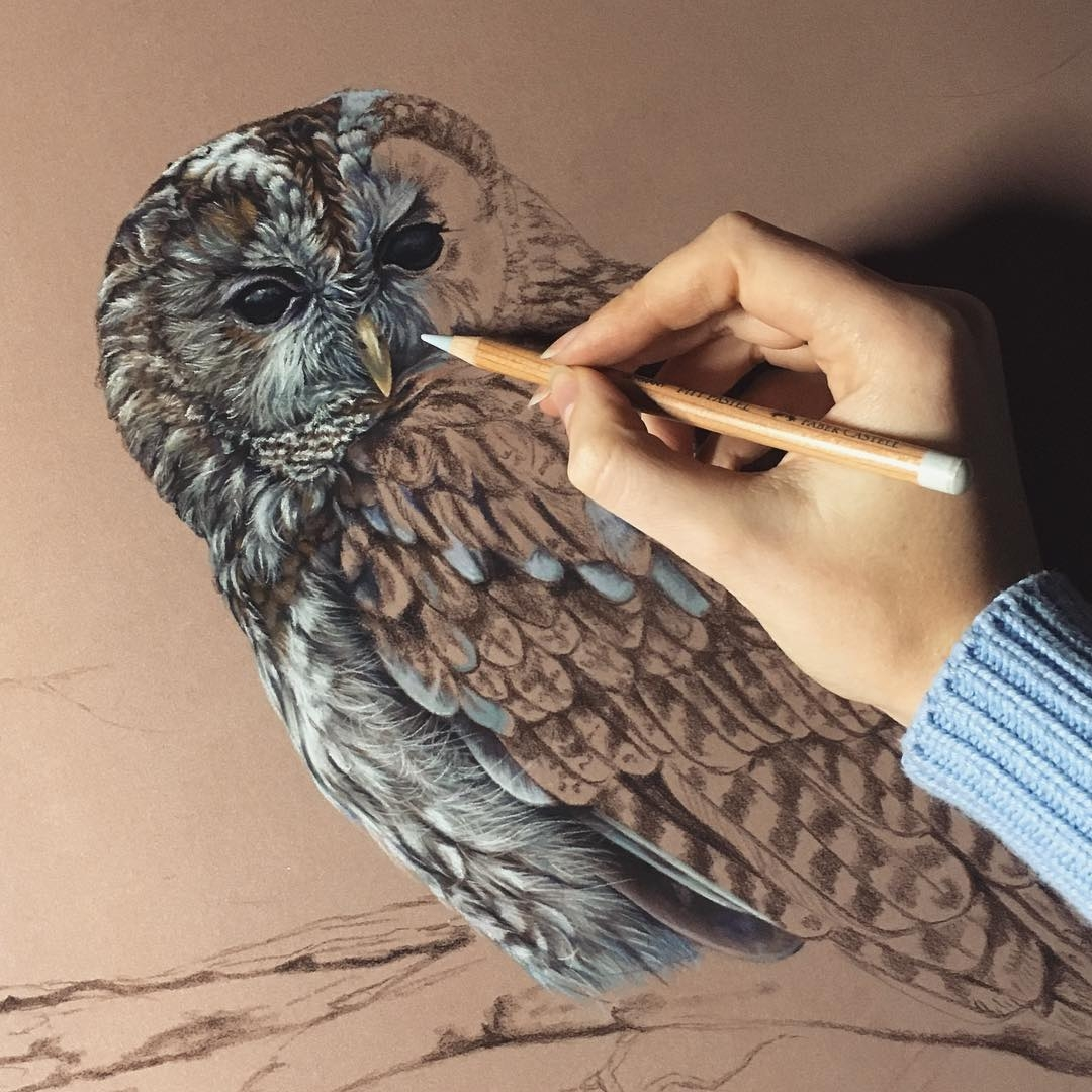 14-Owl-Wip-Tatjana-Bril-Domestic-and-Wild-Animal-Drawings-www-designstack-co