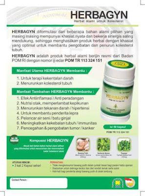 herbagyn-herbal-alami-untuk-obat-menurunkan-kadar-kolesterol-produk-nasa