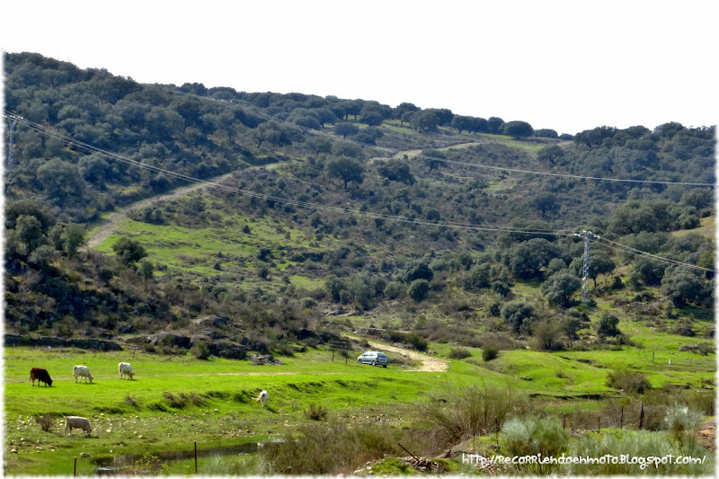 Camino serpentea por colina arriba