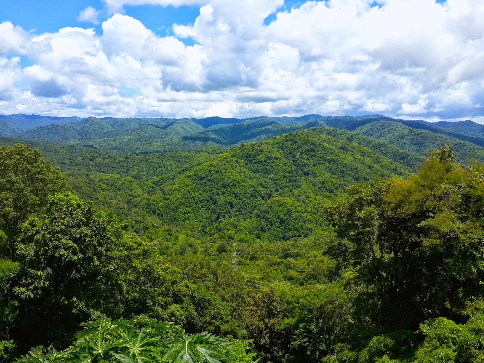 Endless green at Nam Nao National Park, Thailand