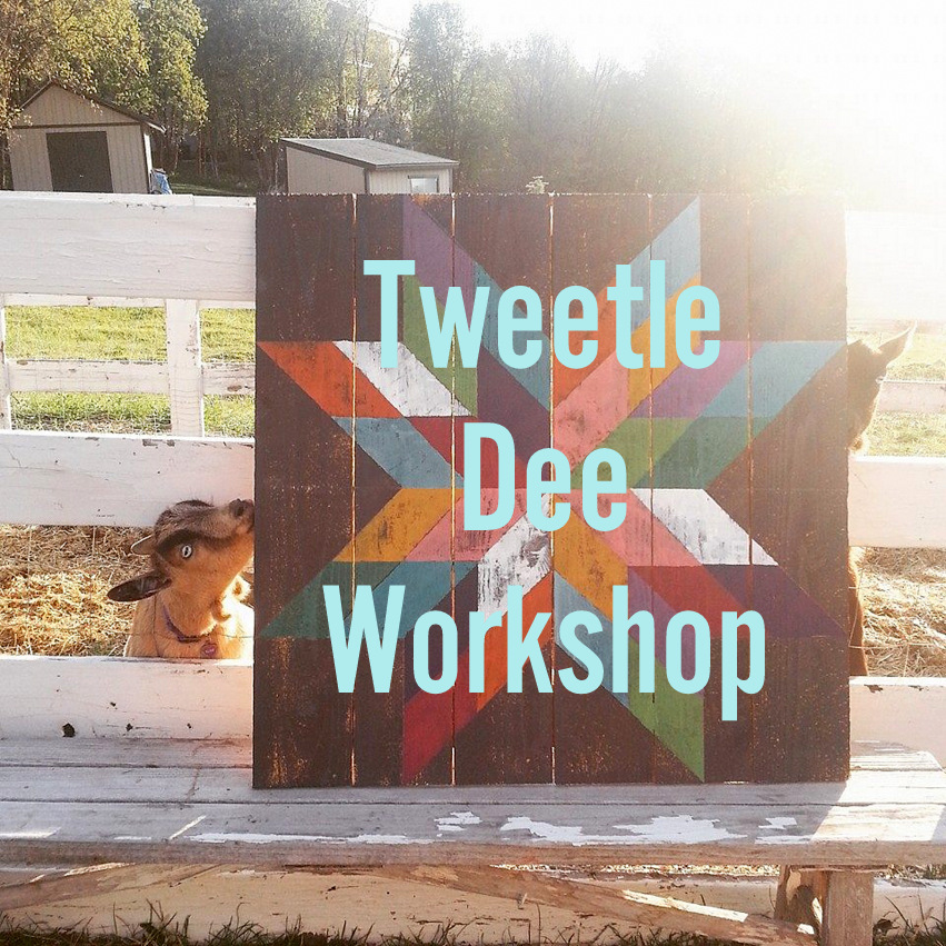 Tweetle Dee Barn Quilt Workshop