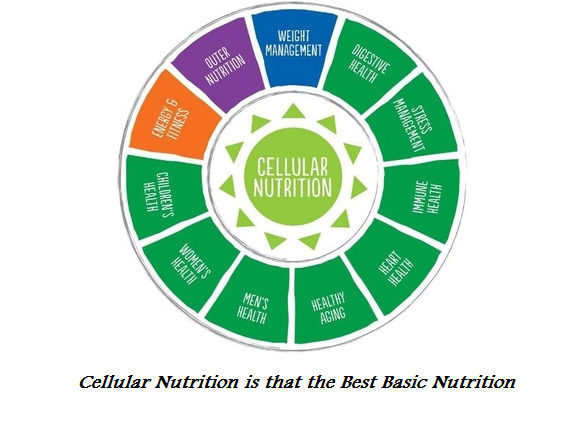 Cellular Nutrition is that the Best Basic Nutrition