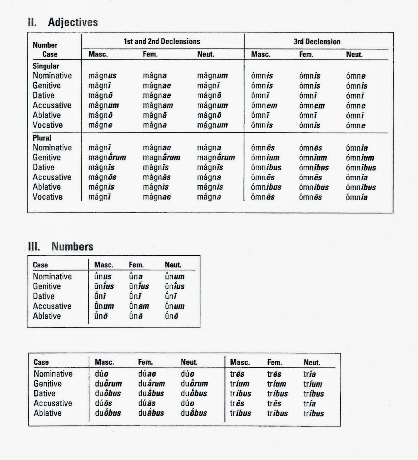 Latin I Latin Adjectives Chart