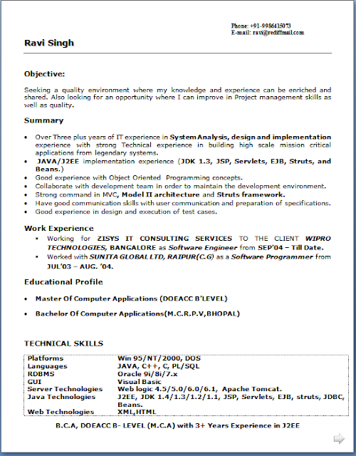 It Experience Resume Format Doc. resume format doc download ...