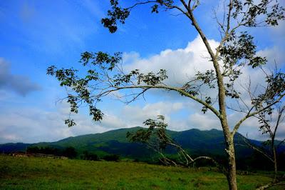 Turismo Rural Itapema