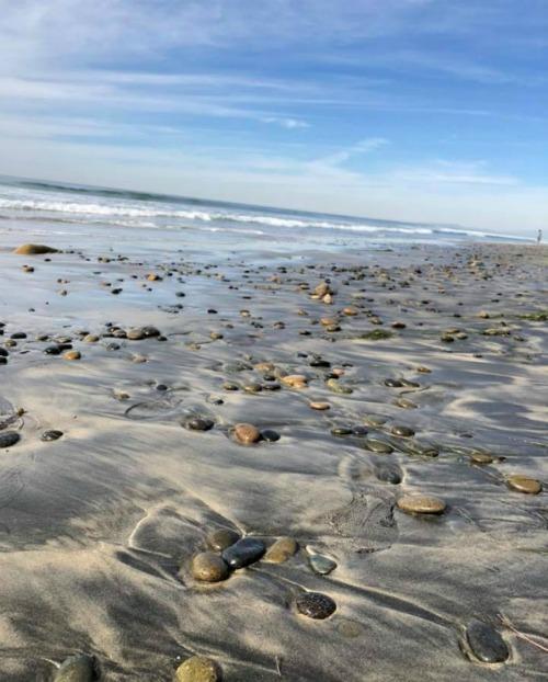 Torrey Pines State Beach San Diego CA