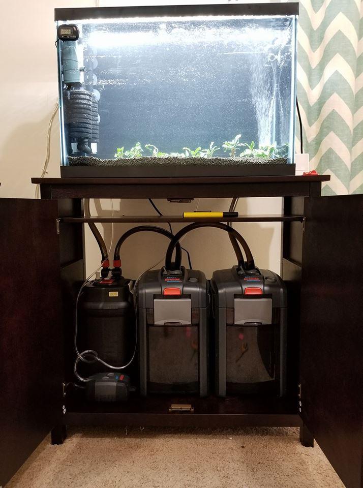 3 lọc thùng cho 1 bể thủy sinh