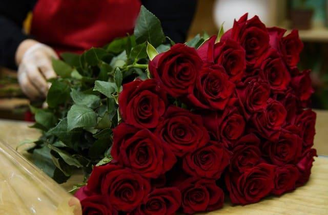 Seputar Bunga Simbol Cinta, Bunga Mawar Merah, dari Filosofi sampai Cara Merawat
