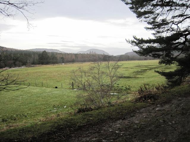 Deeside Walks: a scenic view for walkers near Ballater