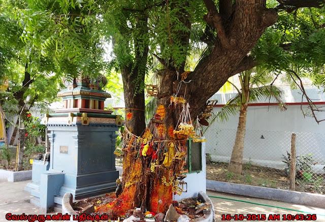 kusalava puram Chennai