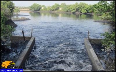 Công ty thiết kế công nghệ xử lý nước thải nhà máy thủy hải sản - Ô nhiễm  từ nhà máy thủy hải sản