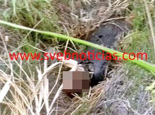 Hallan cuerpo de hombre en estado de putrefaccion en Acultzingo Veracruz