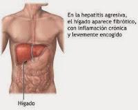 Hepatitis-B-Virus-como-protegernos-tratamiento