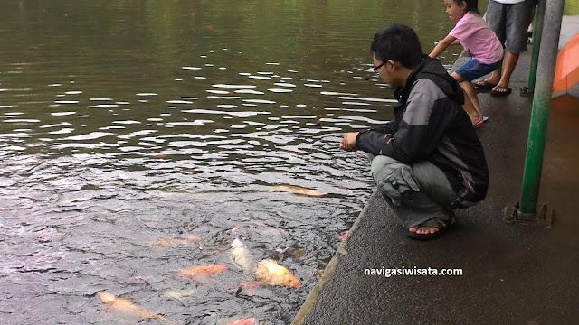 telaga ikan di baturraden