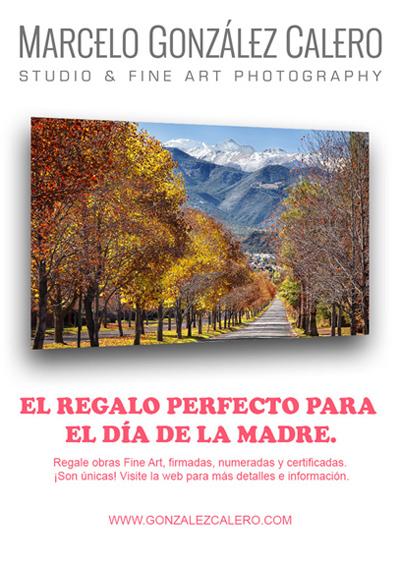 http://gonzalezcalero.com/fine-art/
