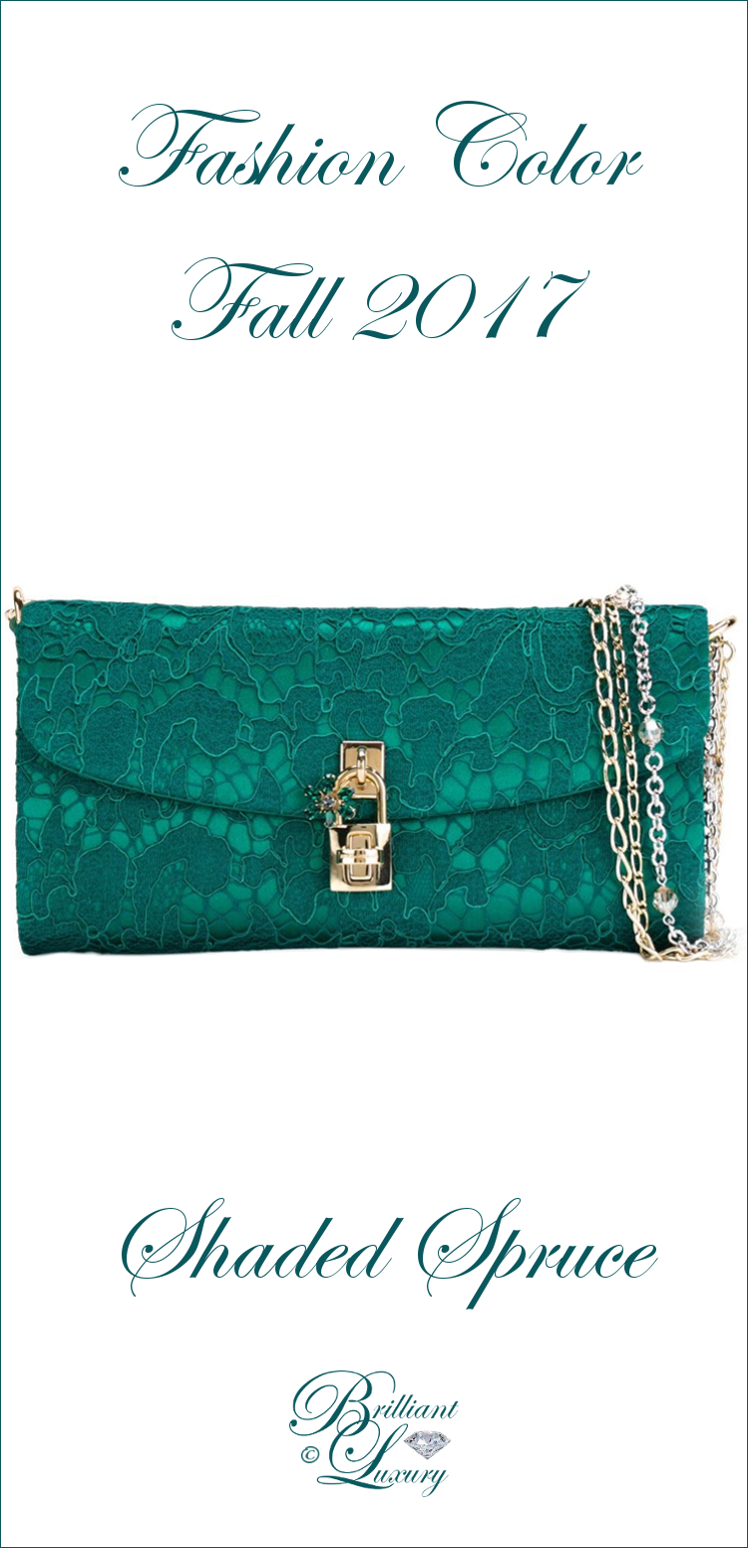 Brilliant Luxury ♦ Dolce & Gabbana Dolce Clutch