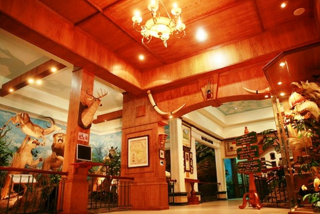 "Objek Wisata Medan - Rahmat"" International Wildlife Museum & Gallery"