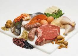 Penjelasan dan Fungsi Protein