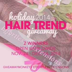 Hair Extensions Holiday 2014 Hair Trend Giveaway image