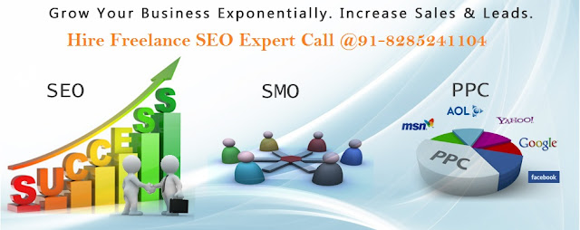 SEO Freelancer in New Delhi