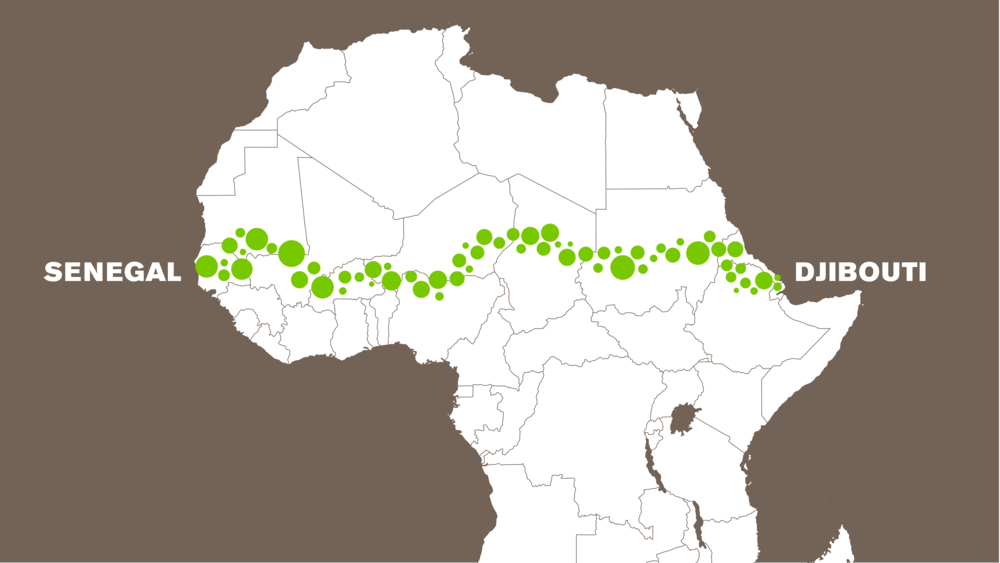 The Great Green Wall Is The Utopian Project That Could Save Earth