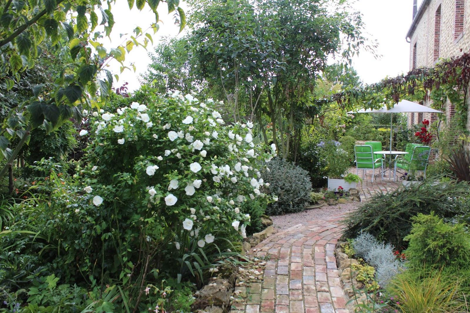 Tailler L Hibiscus De Jardin | Hibiscus Syriacus Pour Fleurir Tout L ...
