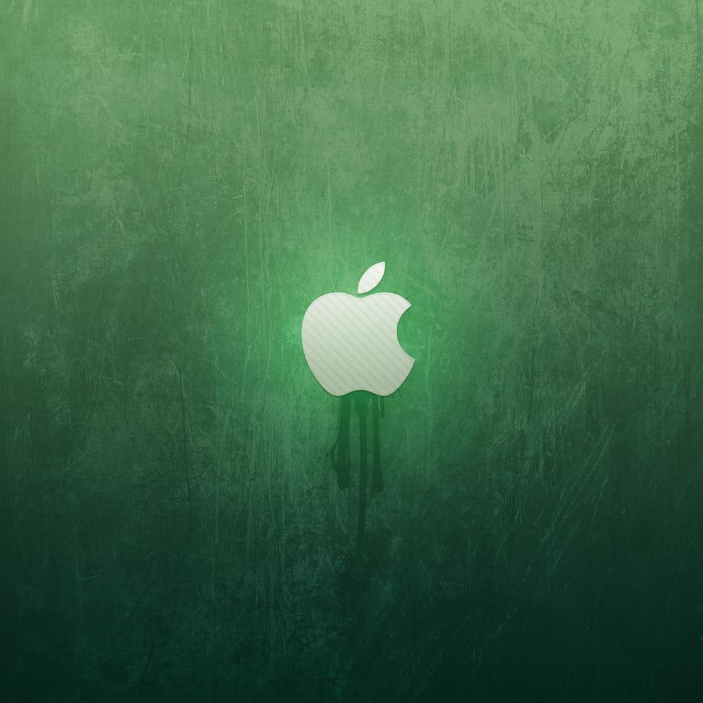Free Download iPad Mini Wallpapers 1024x1024 PPT Garden