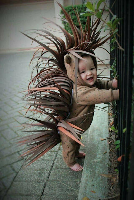Costumes For Babies