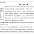 Gramática contextualizada - Texto informativo -  4º Ano