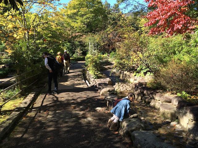 イメージ画像:秋の公園