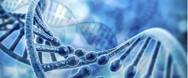 Genética y biologia