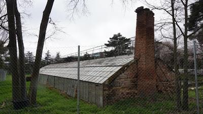 Invernadero. Quinta de Torre Arias