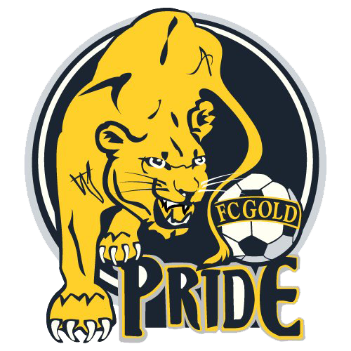 link logo dream league soccer